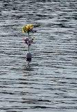 Interesting crab buoy marker